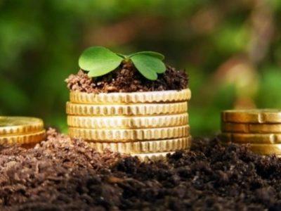 Из выделенных средств федерального бюджета непосредственно до сельскохозяйственных товаропроизводителей было доведено 126 911,9 млн руб., или 99,0% от предельного объема финансирования