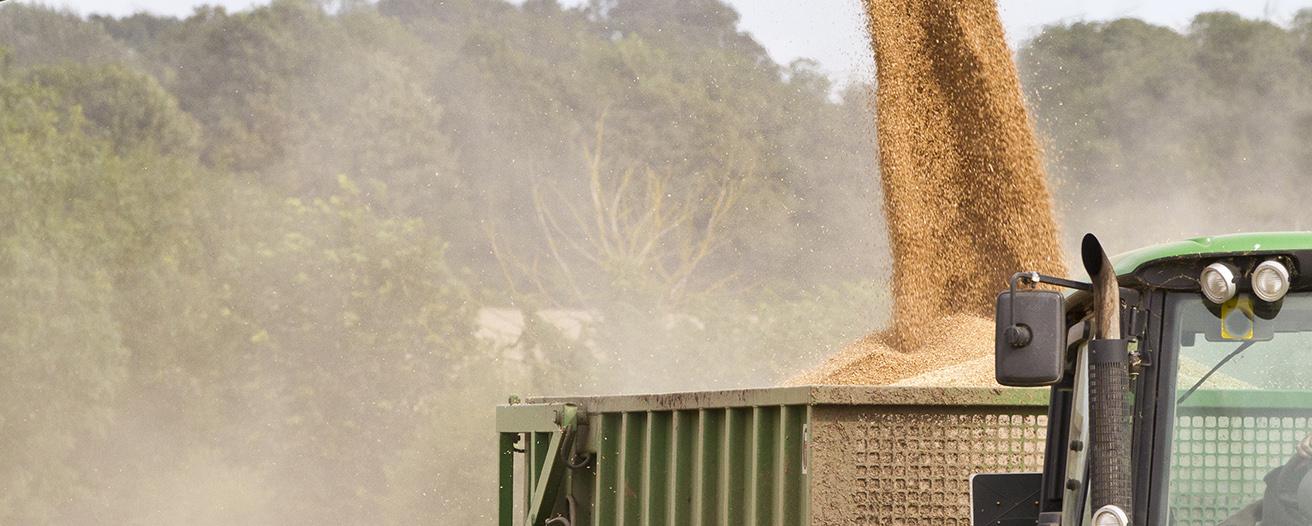 Ход уборочных сельскохозяйственных работ по данным на 13 июля