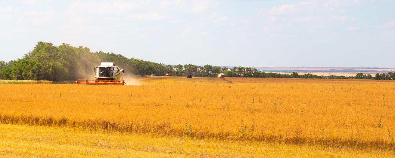 Ход уборочных сельскохозяйственных работ по данным на 9 июля