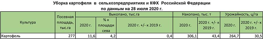 Уборка картофеля в сельхозпредприятиях и КФХ Российской Федерации