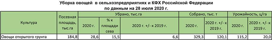 Уборка овощей в сельхозпредприятиях и КФХ Российской Федерации