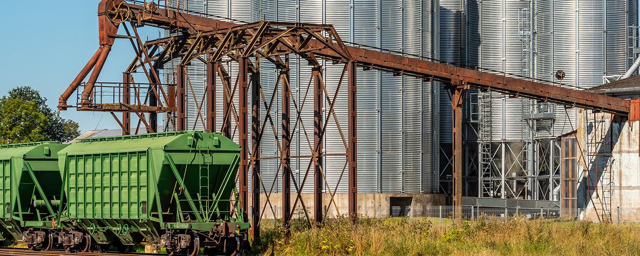 Еженедельный обзор рынка зерновых от 26 августа