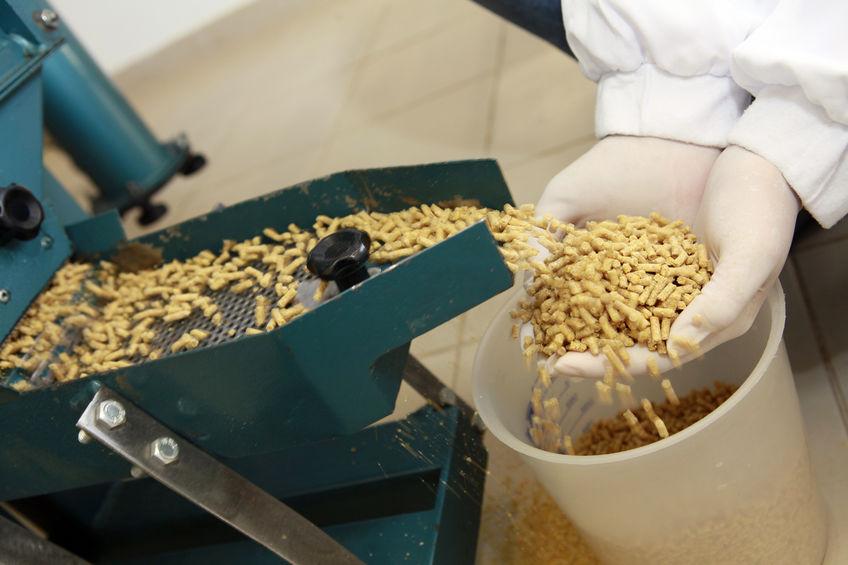 Открытие производства врегионе закроет пятую часть отпоставляемых наСахалин комбикормов