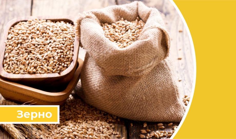 Дайджест «Зерновые»: Потенциал экспорта зерна из России составил 51 млн т