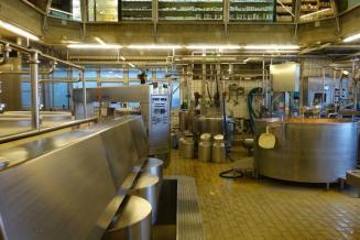 Новый завод позволит тамбовскому «Мичурино молоко» удвоить переработку