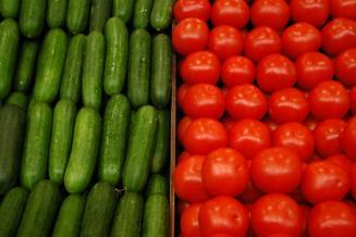 Первый урожай в круглогодичном тепличном комплексе под Тулой соберут в марте