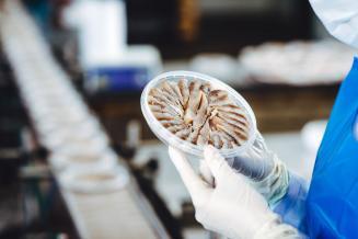 В Мурманской области готовится к запуску новая рыбоперерабатывающая фабрика