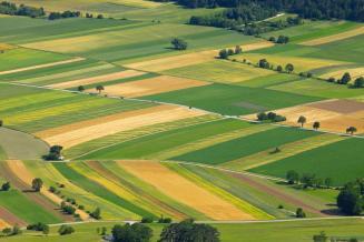 Правительство обеспечит утверждение госпрограммы вовлечения сельхозземель в оборот иразвития мелиорации
