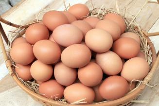 В 2019 году вологодские сельхозорганизации увеличили выпуск яиц на 26,2%