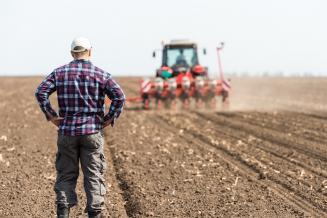Доля малых форм хозяйствования в ВВП увеличилась за год реализации нацпроекта развития фермерской кооперации