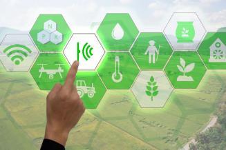 На цифровую платформу управления АПК Кемеровской области выделено 14,7млнруб.