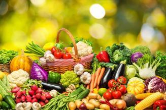 Минсельхоз проработает меры поддержки для производителей овощей на Дальнем Востоке