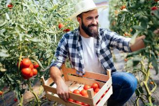 Эксперты посчитали, во сколько обойдется стать фермером в России