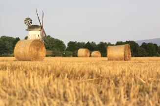 В Забайкалье минсельхоз ведет работу по компенсации затрат на доставку сена нуждающимся хозяйствам