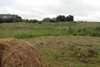Пять проектов из Смоленской области стали победителями конкурса, направленного на комплексное развитие сельских территорий