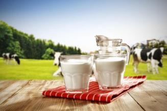 Производство молока в сельхозорганизациях Белгородской области в 2019 году выросло на 12,2%