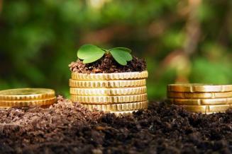 Правительство Орловской области и Минсельхоз России заключили соглашения о предоставлении господдержки на сумму свыше 1,3 млрд руб.