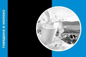 Ежемесячный обзор рынка молока и говядины за январь 2020 года