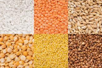 Аграрии Нижегородской области продолжают подготовку к весенним сельскохозяйственным работам