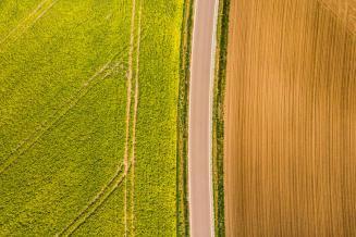 Более 2,5 млн га бесхозных земель подготовили для инвесторов на Дальнем Востоке