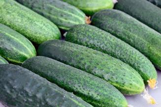 Итоги недели: в Чувашии снизились цены производителей на огурцы