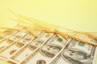 В 2019 году Башкирия экспортировала продукцию АПК на 112,2 млн долларов