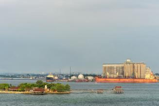 Темпы экспорта зерна из России продолжают расти