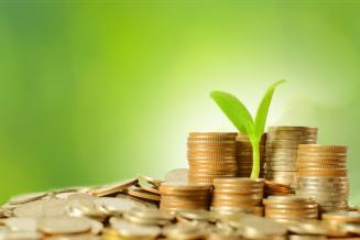 На развитие сельского хозяйства Ингушетии в федеральном бюджете предусмотрено 425,28млн руб.