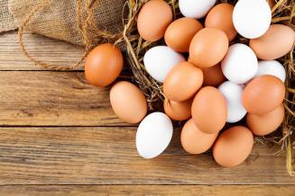 С начала года в Оренбургской области снизились цены производителей на куриные яйца