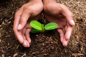 Калужская область на 92% выполнила план по внесению органических удобрений