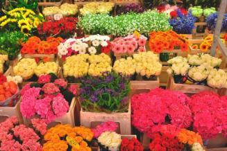 Исследование рынка свежих срезанных цветов в России в 2017–2019 годах