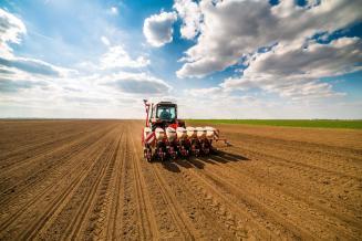В 2020 г. аграрии Владимирской области планируют уделить больше внимания сое и рапсу