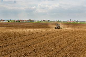 В Красноярском крае ожидается рост посевов зерновых на 2% и картофеля на 4,4%