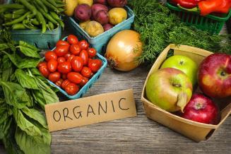 «Роскачество» бесплатно сертифицирует органические продукты для МСП