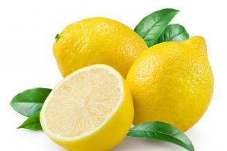 Минсельхоз не ожидает дефицита лимонов в России из-за ограничения их экспорта Турцией