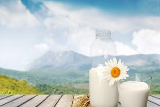 В Башкортостане стали производить больше молока