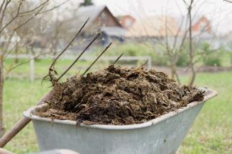Томские ученые создали установку для переработки отходов в газ и удобрения