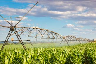 Вовремя весенне-полевых работ планируется провести полив 1,6млн газемель