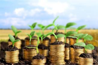 Пермский край довел до аграриев 36,7 млн рублей федеральных субсидий