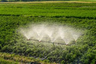 Субсидии на мелиорацию земель увеличатся на 10,4% в 2020 году