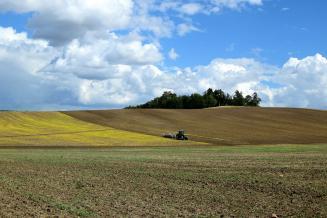 Весенние полевые работы в Саратовской области набирают обороты