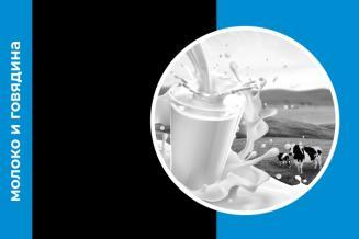 Еженедельный обзор рынка молока и говядины за 16 неделю
