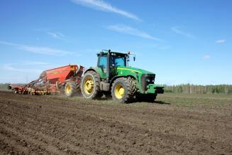 План по севу пшеницы в Липецкой области уже перевыполнен