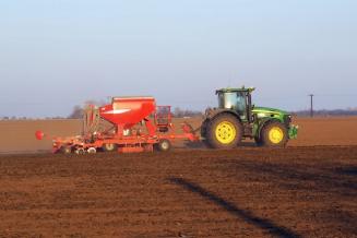 Зерновыми культурами в Тамбовской области засеяно более 60% полей от плана