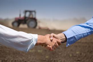 Ростовские аграрии получили 43,1 млн руб. господдержки из федерального бюджета