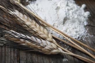 Исследование рынка продукции глубокой переработки зерна в России