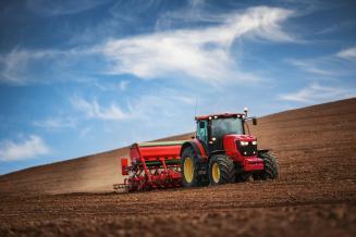 В Белгородской области зерновые посеяны на 98% площади
