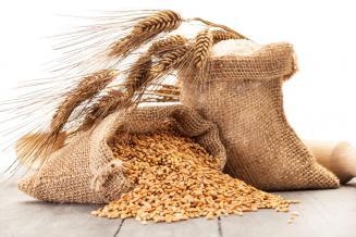 Каким будет рынок зерна в мае