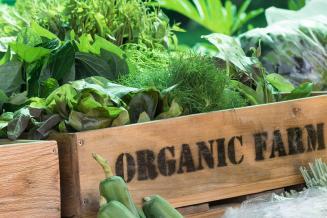 ЕАЭС создаст систему регулирования обращения органической продукции
