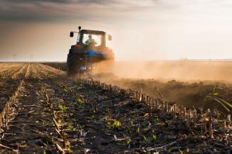 В Бурятии зерновые культуры к 26 мая посеяны на 45,5 тыс. га
